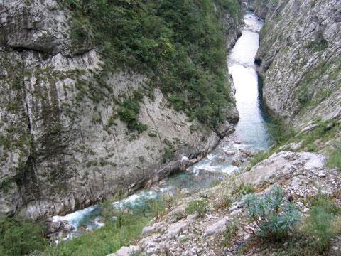 Река Тара в Черногории
